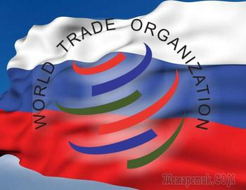 Украина подставила своих западных покровителей: чем грозит иск России в ВТО