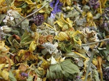 9 трав, чтобы успокоить нервы и снять беспокойство
