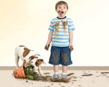 Сложные пятна на ковре и мебели: как от них избавиться