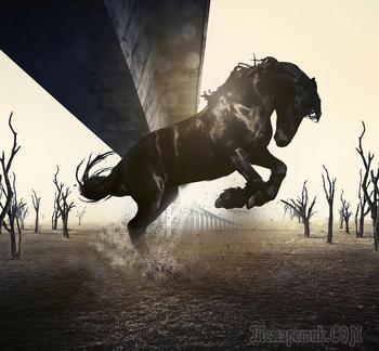 Сказочные иллюстрации, которые перенесут вас в мир фантастики