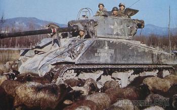 9 лучших танков XX века