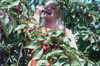 Спеет ягода