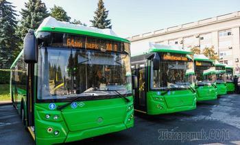 Россияне выразили недовольство общественным транспортом