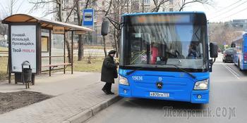 В российском регионе на время нерабочих дней приостановят работу транспорта
