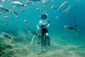 Уникальные чудеса подводного парка в Хорватии, по которому можно гулять пешком