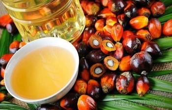 Не только растительное: 9 видов масла, которые можно использовать для готовки