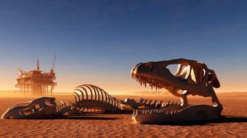 Ужасающие факты о вымирании дикой природы. Человек, не надо так!