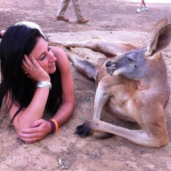 Австралия и её милейшие забавные обитатели