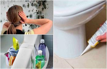 Как защитить ванную комнату от плесени и грибка