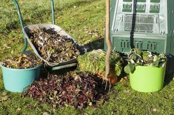 Что из осеннего сада и огорода можно отправить в теплые грядки