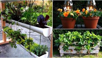Идеи, которые помогут увеличить возможности маленького сада