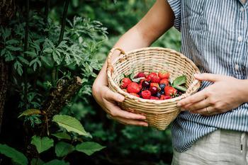 Какие продукты надо есть летом: отвечает диетолог