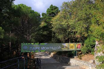 Два дня в ботанических садах Крыма. 3. Никитский Ботанический сад. Парк Монтедор