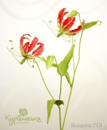 Глориоза. Мастер-класс по лепке цветка в технике керамической флористики