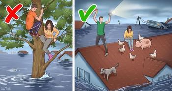 11 заблуждений, которые в критической ситуации могут стоить вам здоровья и даже жизни