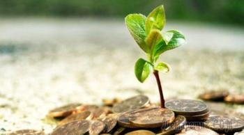 3 альткоина, в которые стоит инвестировать