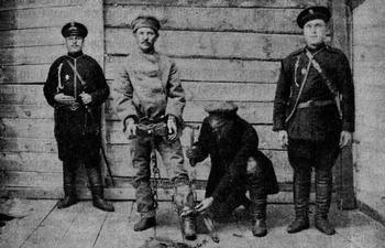 Палач в царской России: история одной професии