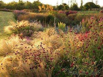"""Естественный сад, или Как поймать """"новую волну"""" Пита Удольфа"""