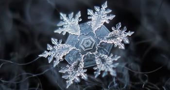 Удивительный микромир: как выглядят снежинки под микроскопом