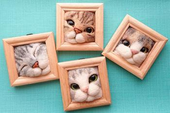 Кошачьи мордочки, которые пытаются вылезти из рамки