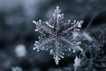 7 умопомрачительных фактов о снеге