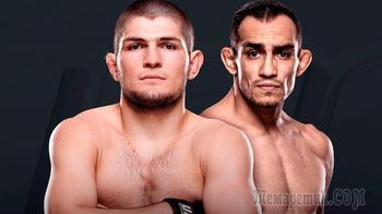 Коронавирус нипочем: UFC нашел место для боя Хабиба