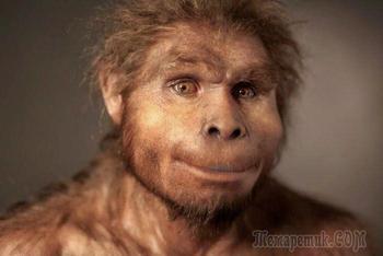 Когда появились первобытные люди? Где сегодня можно встретить дикие племена