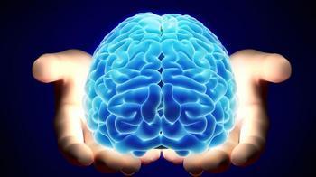 Как диета защищает от болезни Альцгеймера