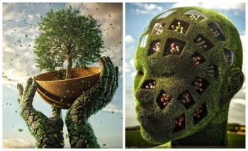 Что будет, если художник объединит природу, человека и цифровую реальность