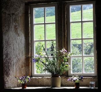 Мама любила чистые окна...