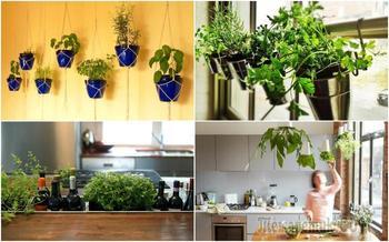 13 простых и эффективных идей по созданию зеленого сада в домашних условиях