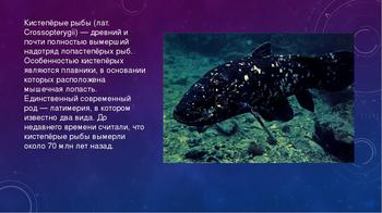 Современные кистеперые рыбы: являются важным звеном в эволюции или нет?