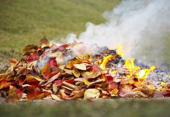 Закон о сжигании мусора и разведении костров на участке