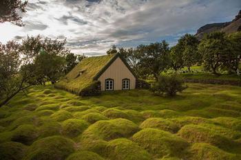 Уютные скандинавские домики с травой на крыше