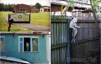 16 экстравагантных соседей, за которыми невозможно не подглядывать