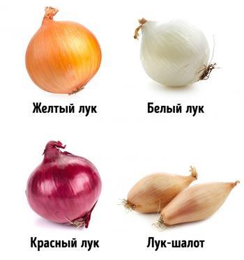 Как правильно выбирать овощи