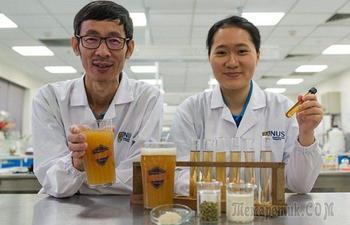 10 «алкогольных» открытий, которые были сделаны учёными в прошлом году
