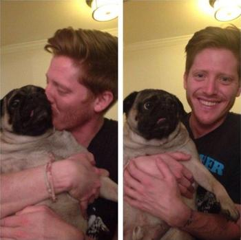 Смешные домашние животные, которые ненавидят целоваться и обниматься