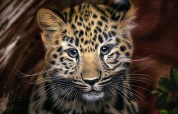 Реалистичные портреты знаменитостей и животных