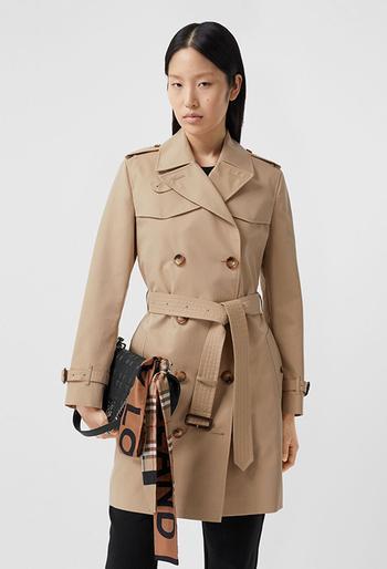 Стильные куртки для ранней осени