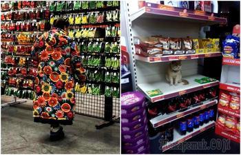 18 уморительных ситуаций, которые доказывают, что ходить в магазин весело