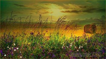 Прощальный отблеск лета (Стих)