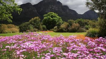 Невозможно надышаться: 10 лучших садов планеты