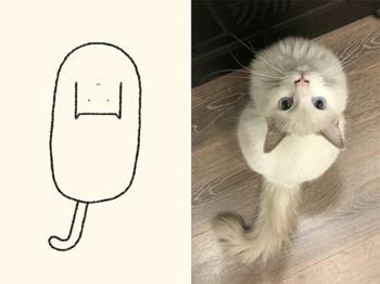 Очень точные рисунки кошек