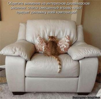 Свежая котоматрица для хорошего настроения