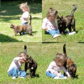 Эмоциональные фотографии с животными
