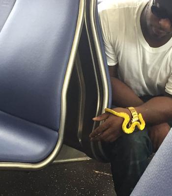 17 попутчиков, благодаря которым обычная поездка в общественном транспорте превратилась в приключение