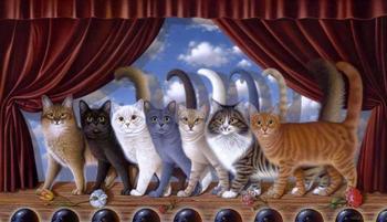Определяем характер кошки по ее окрасу