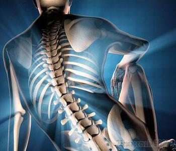 Рентген поясничного отдела позвоночника: назначение, особенности проведения и расшифровка