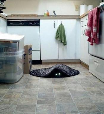 Фотографии, доказывающие, что кошки — это настоящие демоны, которые пытаются захватить этот мир!